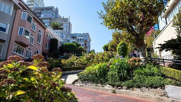 20. San Francisco  (9) - U.S. NATIONAL PARKS - September 2015 - François Scheffen Photography
