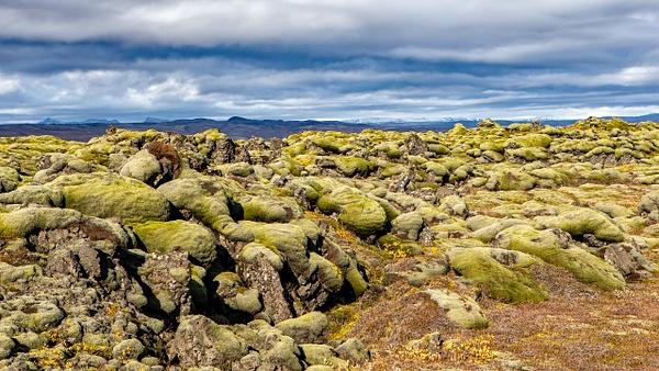 BL2P0974x Medalland lava field - ICELAND - October 2012 - François Scheffen Photography