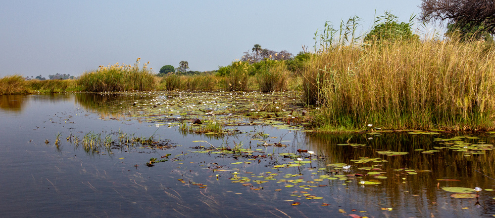 Botswana pano (5)