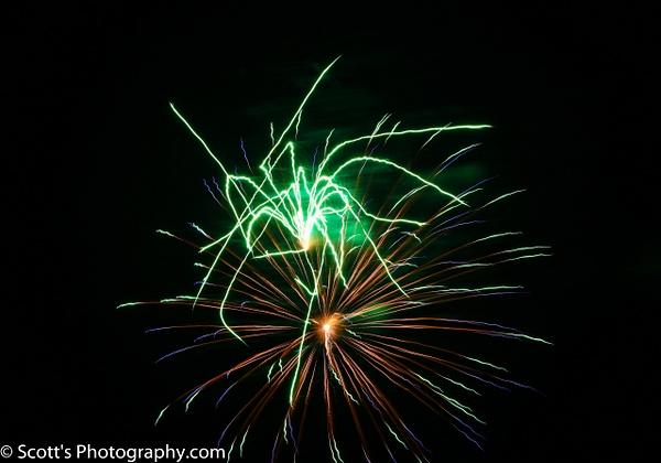 Electronic Grass Hopper - Best Photos - PhotographyScott
