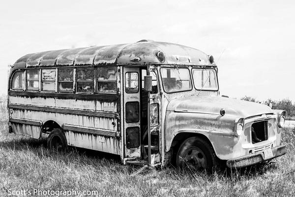 Kids are Outta School - Best Photos - PhotographyScott