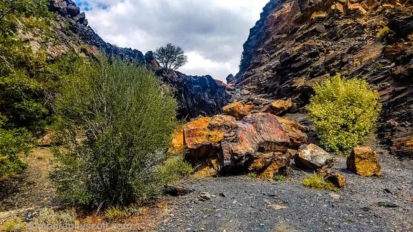 Big Cottonwood Canyon 093021 (8) - Utah - Photography Scott