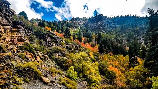Big Cottonwood Canyon 093021 (10) - Utah - Photography Scott