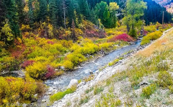 Big Cottonwood Canyon 093021 (22) - Utah - Photography Scott