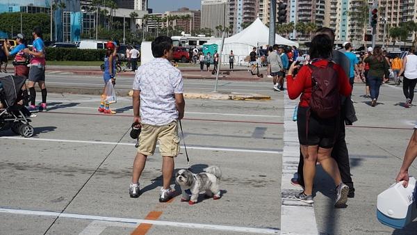 DSC08089 - Long Beach Marathon - Cyril Belarmino Photography