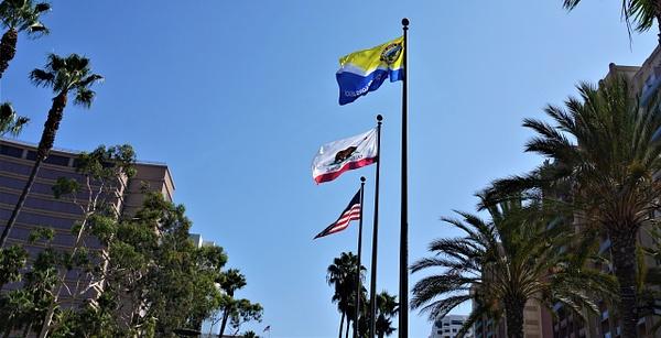 DSC08149 - Long Beach Marathon - Cyril Belarmino Photography