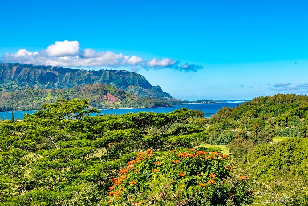 Kauai -3734