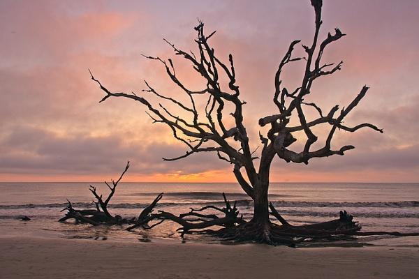 Boneyard Sunrise - Home - Phil Mason Photography