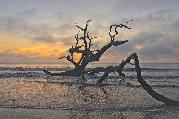 Boneyard Sunrise 5 - Shore Landscapes - Phil Mason Photography