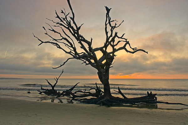 Boneyard Sunrise 4 - Shore Landscapes - Phil Mason Photography