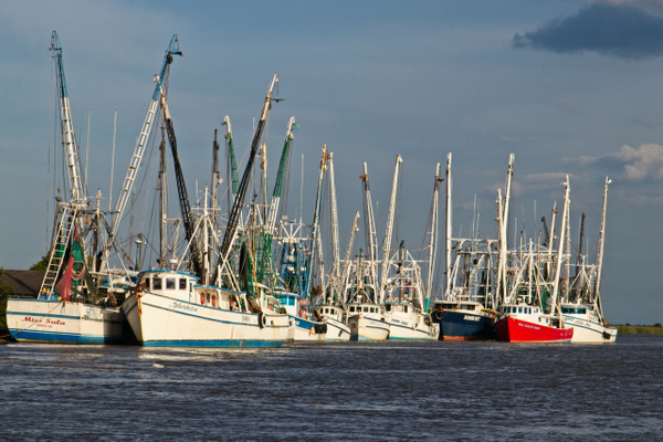 Darien Shrimp Boats - Shore Landscapes - Phil Mason Photography