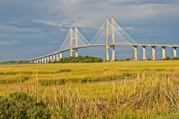 Sidney Lanier Bridge 1 - Shore Landscapes - Phil Mason Photography