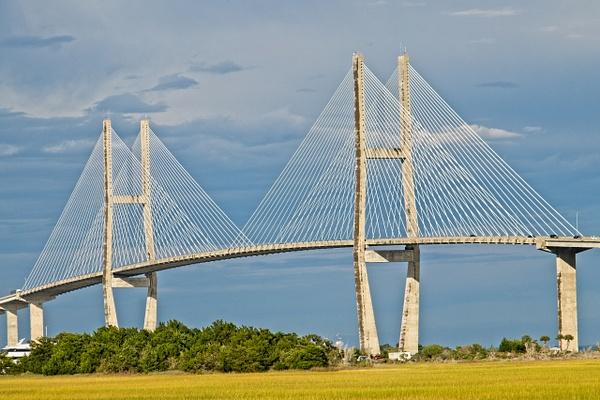 Sidney Lanier Bridge 2 - Shore Landscapes - Phil Mason Photography