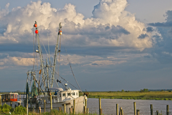 Darien Shrimp Boats 2 - Shore Landscapes - Phil Mason Photography