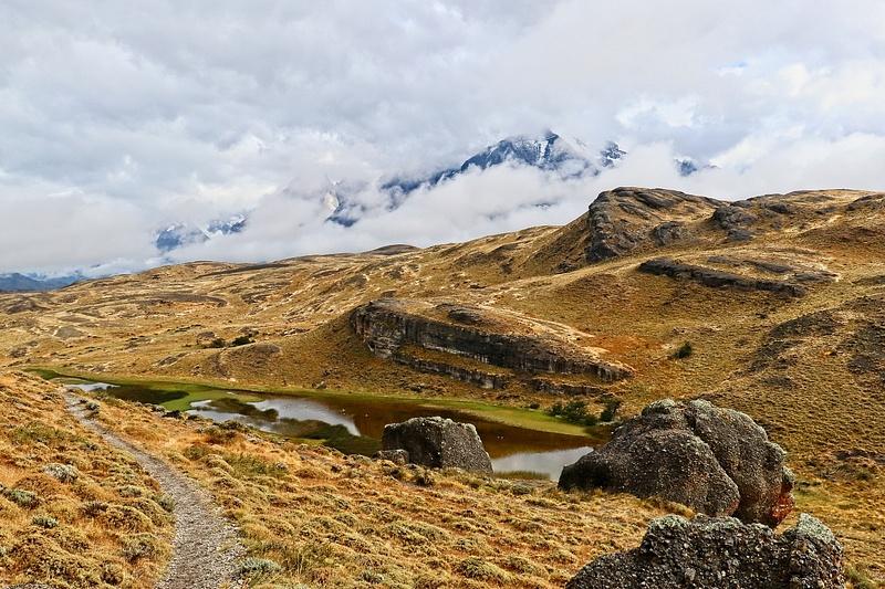 Fauna Trail