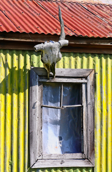 Skull Window - Things of Interest - Phil Mason Photography