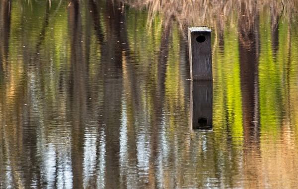 Reflections - Landscapes - Phil Mason Photography