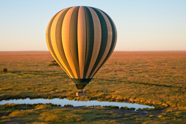 BHot Air Balloon Serengeti 2 - Landscapes - Phil Mason Photography