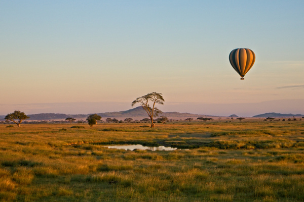 Hot Air Balloon Serengeti 1 - Landscapes - Phil Mason Photography
