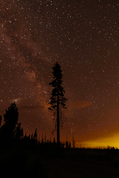 Milky Way-4026 - Astrophotography - Neil Sims Photography