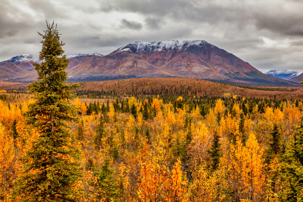 Alaska Fall Colors - National Parks - Klevens Photography