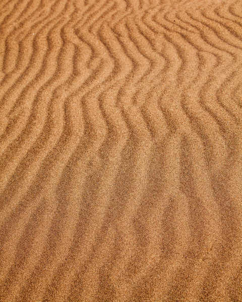 Sand Lines - Order Here - Klevens Photography