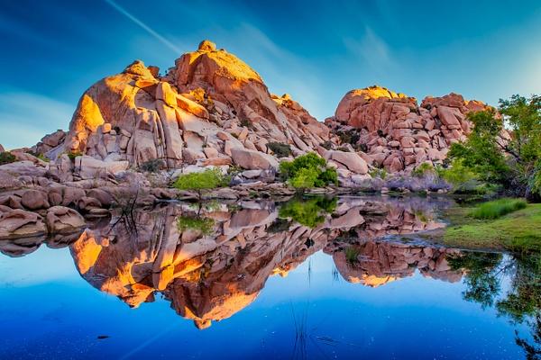 Joshua Tree Sunrise - Order Here - Klevens Photography