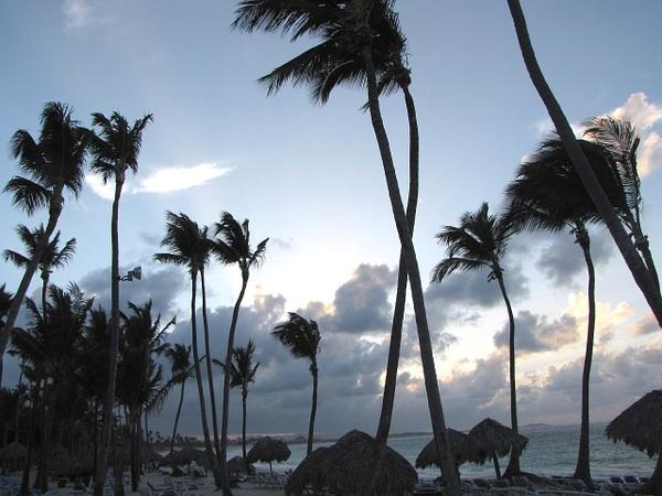 Punta Cana April 2009 075 - Nature - Lane Photography