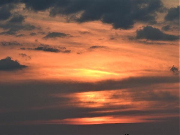 SW 8-18-19 moon sunset (39) - Nature - Lane Photography