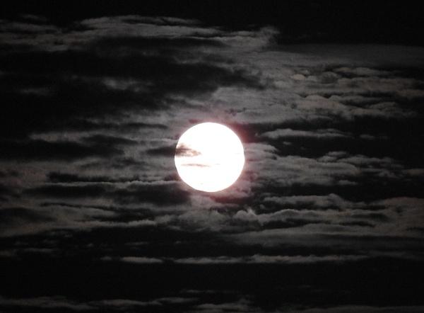 DSCN0243 - Moon - Lane Photography