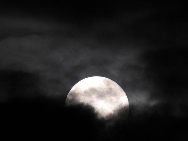 Moon 5-29-18 (1) - Moon - Lane Photography
