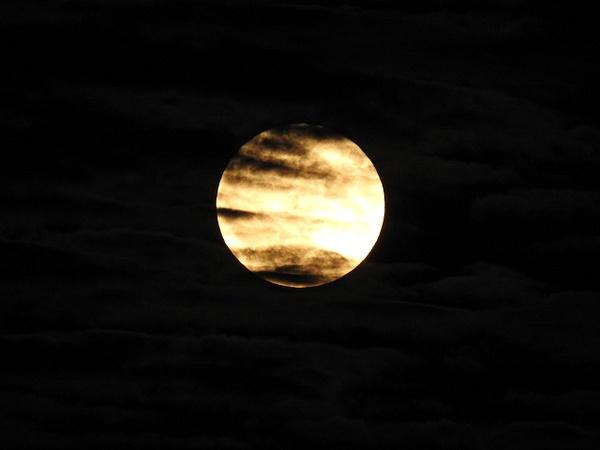 DSCN0246 - Moon - Lane Photography
