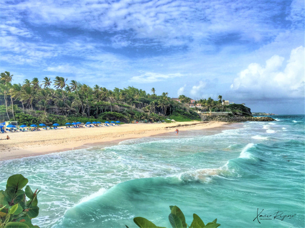 Crane Beach Barbados, WI - Caribbean - Image8