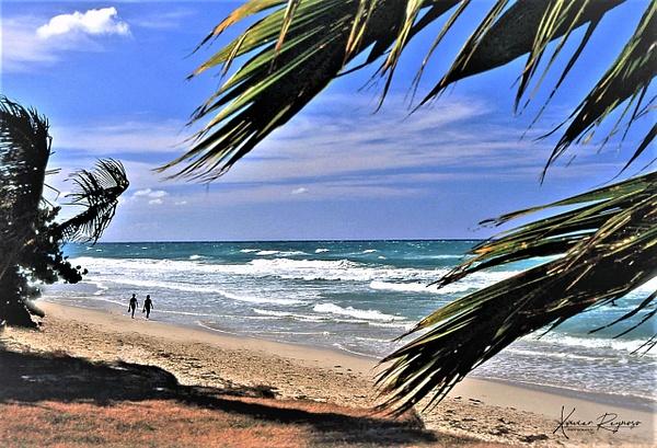 Playa Varadero, Cuba - Caribbean - Image8