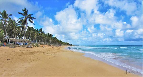 Playa Macao DR - Caribbean - Image8