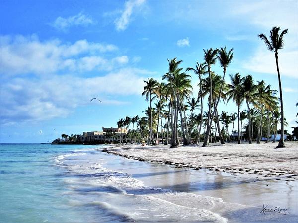 Playa Juanillo DR - Caribbean - Image8
