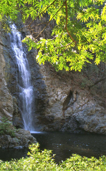 Waterfall Costa Rica - Caribbean - Image8