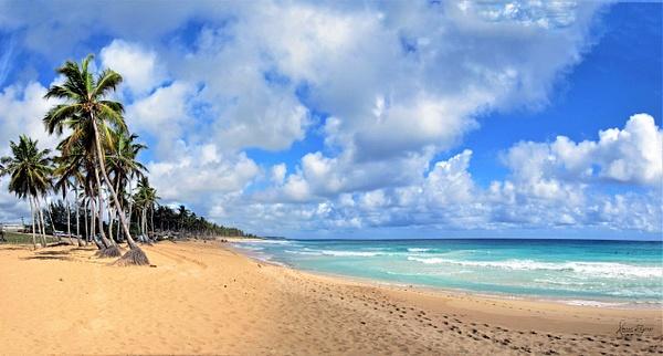 Playa Macao Panorama - Caribbean - Image8