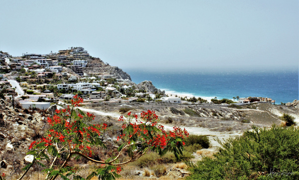 Cabo PB Resort - Mexico - ImageN8