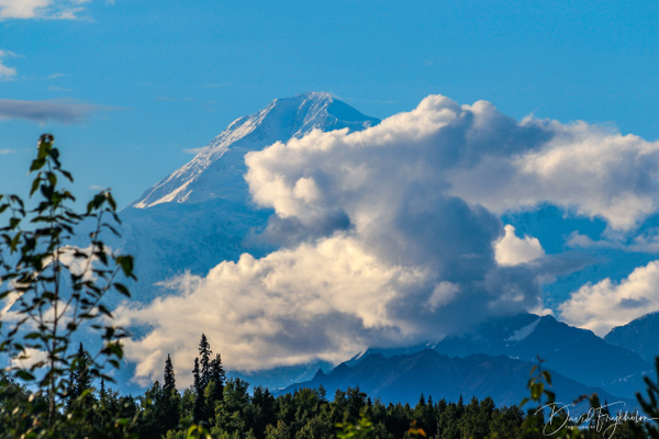 Denali Mountain - Home - David Frykholm Photography