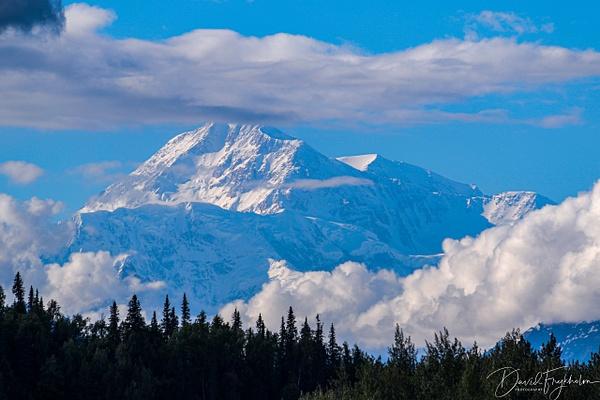 Mt. Denali - Home - David Frykholm Photography