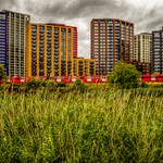 Cody Dock / River Lea photography competition