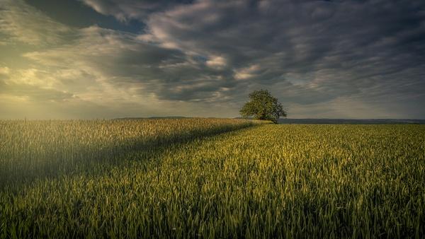 Schupfart Switzerland - Landscape - Marko Klavs Photography