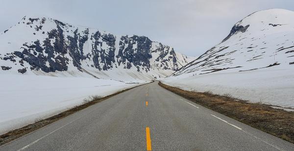 Spring in Norway by Saad Najam