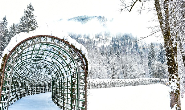 Snow Tunnel  Germany - Architecture - Nicola Lubbock Photography
