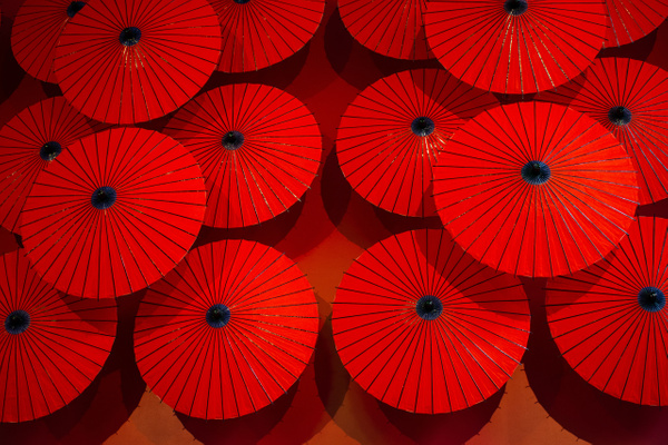 Red parasols Japan - Home - Nicola Lubbock Photography