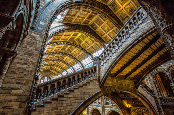 Museum Natural History 3-Edit - The Great Indoors - Scott Kelby
