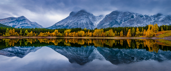 Panoramic Mount Kidd from Wedge Pond - Larch Trees in full bloom - storm clouds. - Panoramic - Yves Gagnon Photography