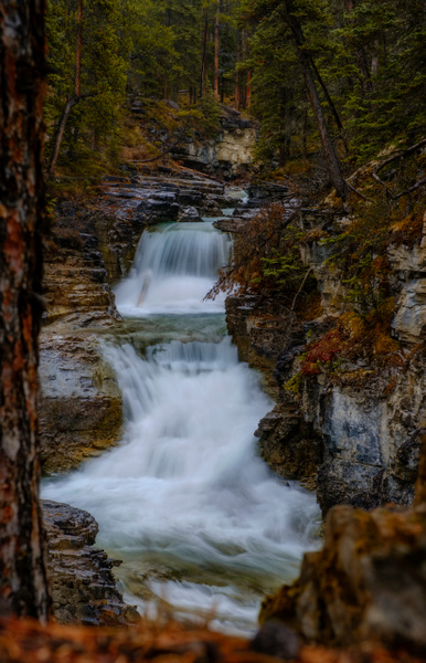 Beauty Creek Under a rainy morning,  Banff National Park, Alberta, Canada - Small Group Landscape Photography Workshops of the Canadian Rockies