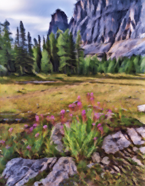 Digital Paint Fireweeds-Castle Mountain, Banff National Park, Alberta - Abstract Artwork - Yves Gagnon Photography